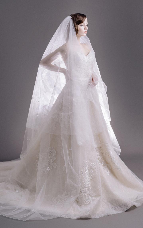 Tiffany Veil